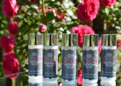 ARC LOVE 30ML 820 X 312